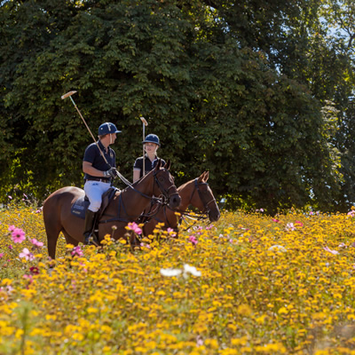 Coworth Park polo